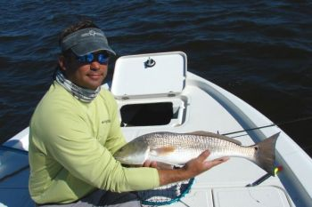 Guide Mark Stacy said live bait has been producing some nice red drum, trout and flounder in Brunswick County's inside waters.