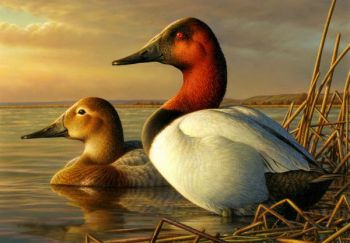 Federal duck stamps will be available on-line this year through the N.C. Wildlife Resources Commission.