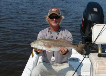 Topwater fishing for reds has been excellent in the Cape Fear River between Carolina Beach and Bald Head Island