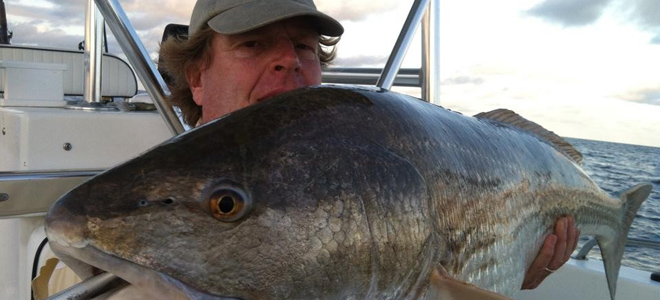 Lipless crankbaits are latest hot lure for Pamlico Sound's old drum