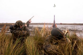 Finding areas that geese are using to feed, loaf or roost can put you in position for some great hunting.