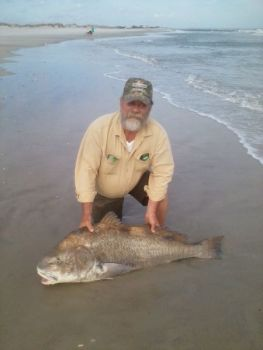 A New Jersey surf fisherman caught and released what he thought was a huge red drum. He later found out it was a black drum, one close to state-record size.