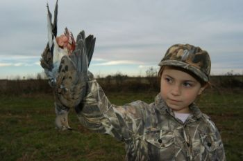 A dove-hunting clinic for young hunters will be held in the Conway area on Nov. 22.