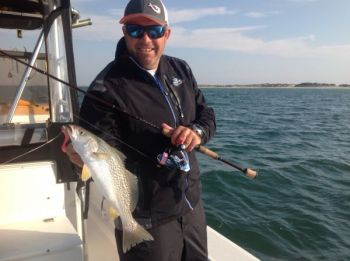 The Cape Lookout area is drawing a lot of anglers because of loads of gray trout, red drum and bluefish.