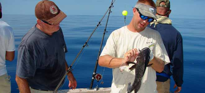 Season dates change on AJs, black sea bass in South Atlantic