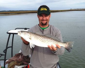 Plenty of speckled trout, and quite a few good ones, are showing up in anglers' catches over the past week along the Brunswick County section of North Carolina's coastline.