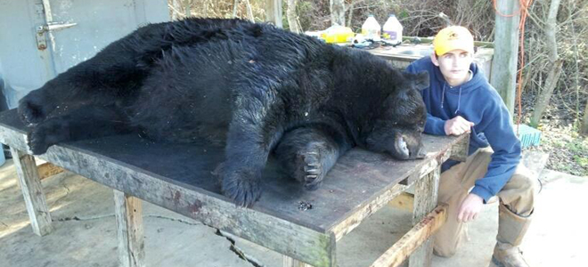 WIlmington teen kills second-largest bear ever in North Carolina