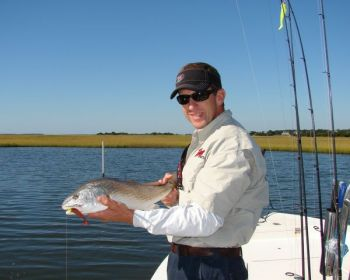 Big schools of redfish are making the rounds of marshes in the Swansboro area.