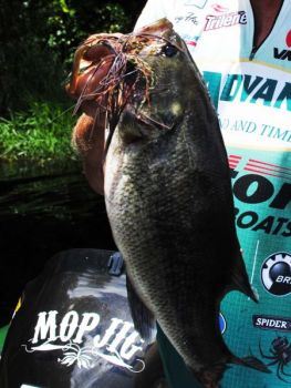A big Mop Jig and soft-plastic trailer is considered one of the best big-fish combinations on the market.