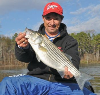 Fishermen have been catching plenty of striped bass on Kerr Lake/Buggs Island since Thanksgiving.