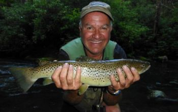 This beautiful brown trout was caught in Hazel Creek in the Great Smoky Mountains National Park, which has more than 1,000 miles of trout streams.