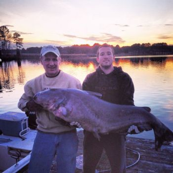 A Murfreesboro fisherman's huge blue catfish, caught on Monday at Lake Gaston, fell 3 pounds short of the state record.
