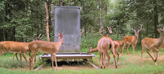 Bill in state senate would take control of deer farms away from Commission