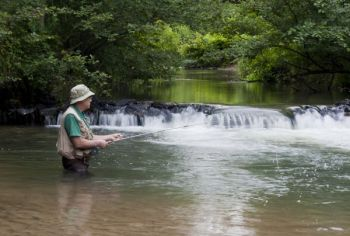 Trout season on hatchery supported streams will open in western North Carolina on Saturday morning.