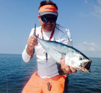 Fishermen using small lures and jigs are catching the first false albacore and Atlantic bonito that have shown up this week off Cape Lookout.
