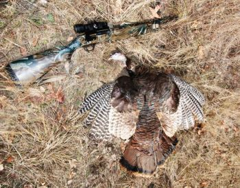 No matter what kind of shotgun you use during turkey season, test it with several different shotshell loads so you�ll know how it performs with a gobbler 40 yards from the end of the barrel.