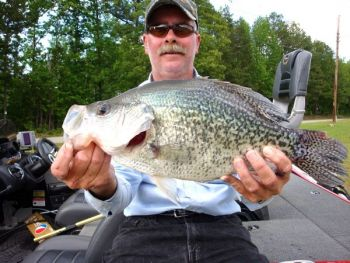 find undercover crappie this month on kerr lake carolina