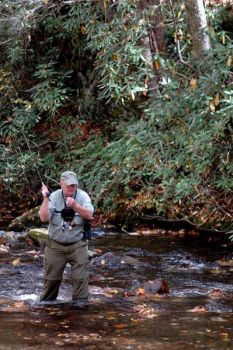 Mike Kesselring fishes Rough Creek in the Great Smoky Mountain National Park.