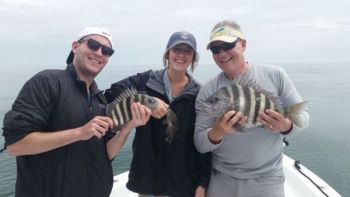 Nearshore reefs off Hilton Head Island have produced a pretty good sheepshead bite over the past week or two.
