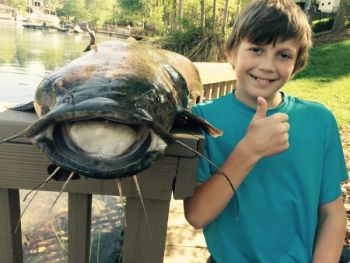 A 10-year-old Lake Norman boy needed and landed a 4-foot flathead catfish he found sunning near his family's dock.