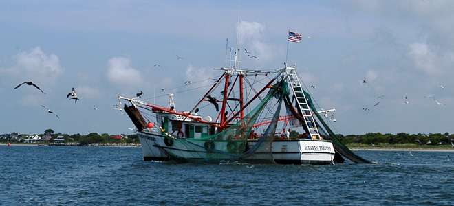 The NCWF has offered ideas on fixing coastal fisheries problems