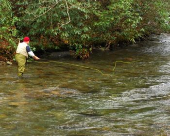 Fishermen can fish streamers either downstream or upstream, although they might be more effective downstream.