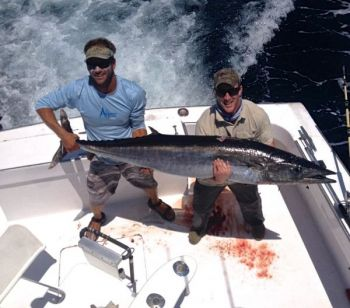 An Oregon Inlet charterboat ran into a huge wahoo this past Saturday, capping off a great trip for yellowfin tuna.