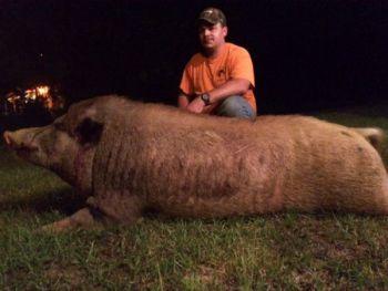 North Carolina hunter Earl Trent killed the 500-pound