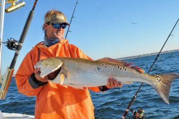 Toby Fulford of Holden Beach landed this beautiful red drum in late September last year off Oak Island.