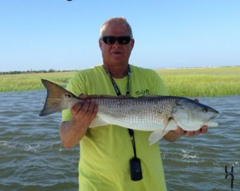 The first sign of a fall mullet run, even in August, has jump-started some great inshore fishing around Southport