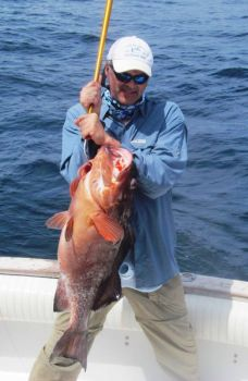 Grouper are just one species of fish that anglers can expect when bottom fishing this time of year.