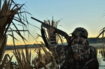 November duck hunting on North Carolina�s Pamlico Sound can be top-drawer.