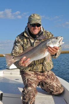 Anglers are allowed to keep one red drum per day between 18 and 27 inches.