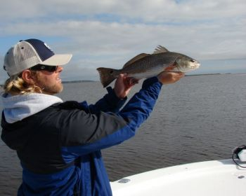 Scrappy, slot-sized red drum are part of the allure of the marshes and bays between Fort Fisher and Bald Head Island, which are full of fish during the winter.