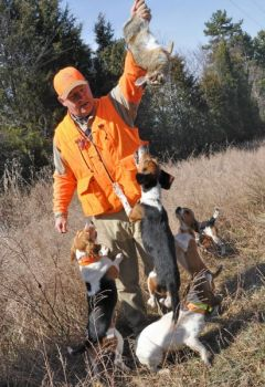 Rabbit hunter Mike Harden of Graham shows a rabbit to a beagle pack to let the dogs know it's time to begin another hunt.