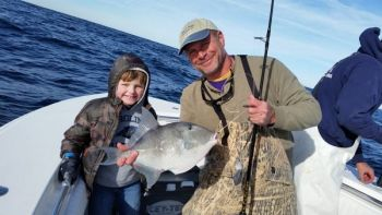 Anglers are having a field day with triggerfish on South Carolina's nearshore reefs and live bottom.