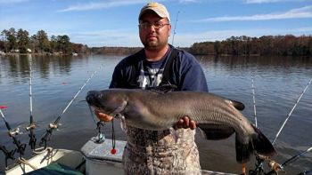 Lake Wylie is producing plenty of nice blue catfish like this one caught by James Moore of Westminster.