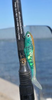 Soft-plastic lures like this Billy Bay Halo Shad will produce speckled trout around the New River�s artificial reef.