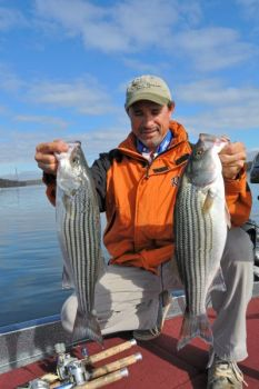 Striped bass have recovered from an infestation of copepods in the early 2000s, and plenty of 3- to 10-pound fish are being caught.