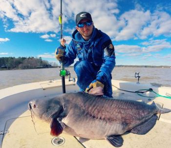Zakk Royce, who holds the N.C. blue catfish record, caught another triple digit blue Friday, this time on Lake Gaston.