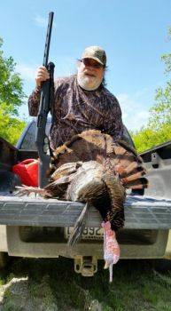 The author killed this fine tom turkey last May by setting up late one morning and using a gobbler decoy.
