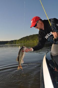 Brush up on your brush tactics to catch Kerr Lake largemouths in May.