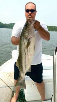 Lake Rhodhiss holds some of the biggest stripers in any North Carolina reservoir, and they�re ganged up in the lake�s upper reaches this time of year, holding in deep holes and around current breaks.