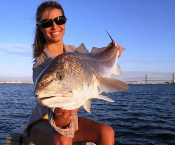 According to the Atlantic States Marine Fisheries Commission, anglers are catching too many redfish in the region from South Carolina to the northern part of Florida.