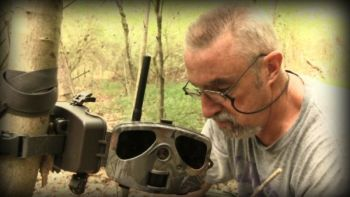 Putting up trail cameras in mid-summer around fields, food plots and incoming trails can help identify bucks and does in a local herd, as long as you don't bother too many deer while checking the cameras.
