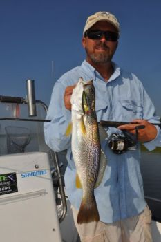 Gray trout are often caught on the same lures, in the same areas, as the more-popular speckled trout.