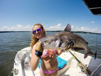 Blue catfish will strike baits at a variety of depths during the summer, but keep several baits off the bottom to make sure you�ve got the water column covered.
