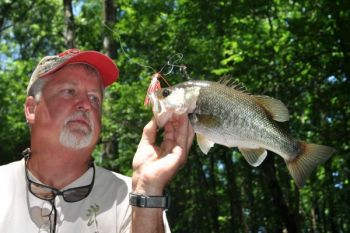 Snow Hill's Lee Lanier loves to fish the Neuse River for chunky largemouth bass like this one that hit a spinnerbait.