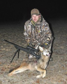 Intensive hunting can lower coyote numbers on small properties, but a landscape solution hasn�t been found.