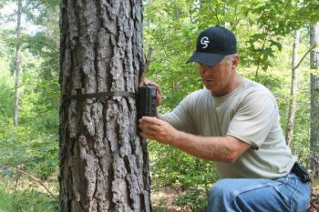 Set up your trail cameras as a tool for first-rate preseason scouting.